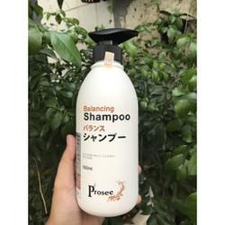 Dầu gội đặc trị gầu chống dầu, chống rụng tóc Prosee Balancing Shampoo AS3 500ml