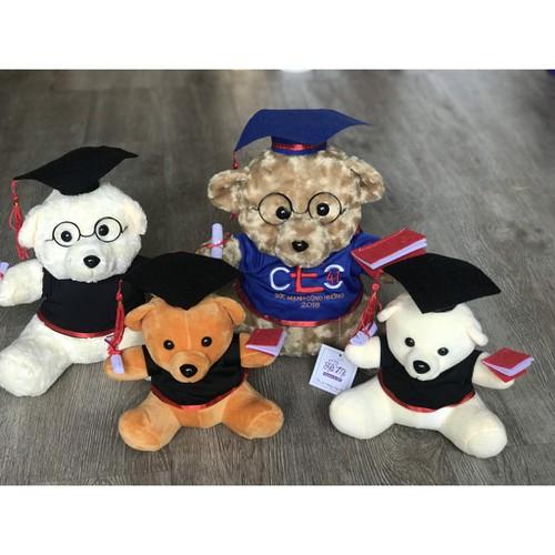 Gấu tốt nghiệp 20cm lông mịn giá rẻ