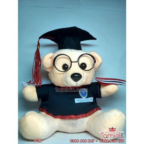 Siêu rẻ gấu bông cử nhân tốt nghiệp 20cm