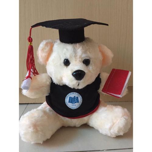 Gấu tốt nghiệp 40 cm lông xù không kính kho hcm