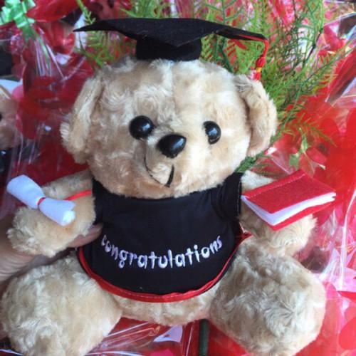 Gấu bông cử nhân gấu bông tốt nghiệp loại 30cm