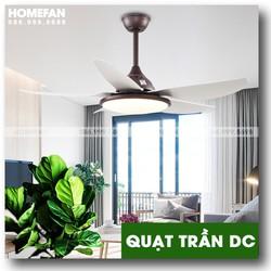 Mẫu quạt trần cho nhà chung cư với nội thất hiện đại HL-FAN686