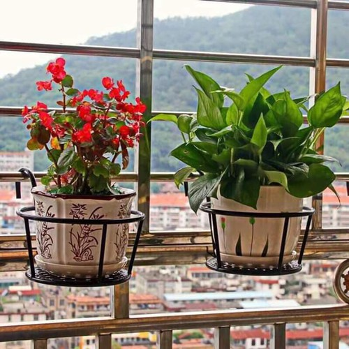 Giá kệ để cây bằng sắt chậu hoa tròn treo ban công cửa sổ loại to đường kính 22 cm - 20574070 , 23469839 , 15_23469839 , 65000 , Gia-ke-de-cay-bang-sat-chau-hoa-tron-treo-ban-cong-cua-so-loai-to-duong-kinh-22-cm-15_23469839 , sendo.vn , Giá kệ để cây bằng sắt chậu hoa tròn treo ban công cửa sổ loại to đường kính 22 cm