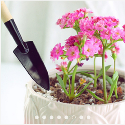 [Siêu sale] bộ cuốc xẻng làm vườn mini tiện dụng
