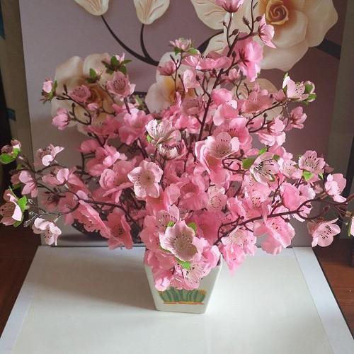 Hoa giả - chậu hoa anh đào trang trí - 21284292 , 24510618 , 15_24510618 , 149000 , Hoa-gia-chau-hoa-anh-dao-trang-tri-15_24510618 , sendo.vn , Hoa giả - chậu hoa anh đào trang trí