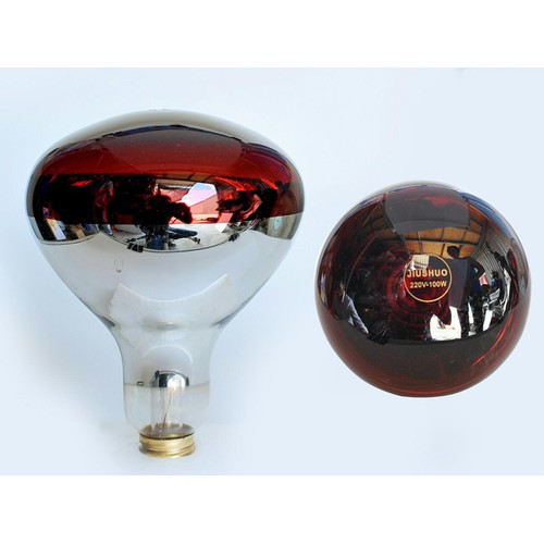 Đèn úm gà hồng ngoại sưởi gia cầm cao cấp 150w