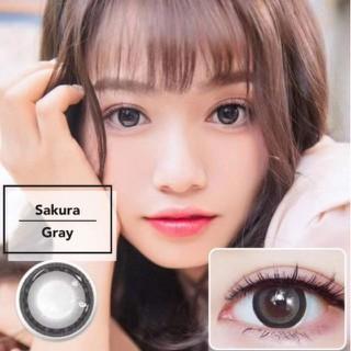 Lens mắt kính áp tròng Xám Gray, không độ, Tặng khay đựng sử dụng 1 năm không cộm mắt l26 - l26 thumbnail