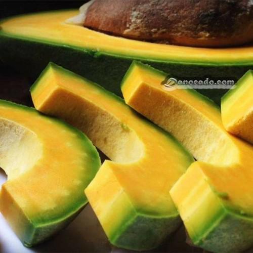 Cây giống bơ quả ruột đỏ - 19768835 , 24913173 , 15_24913173 , 150000 , Cay-giong-bo-qua-ruot-do-15_24913173 , sendo.vn , Cây giống bơ quả ruột đỏ