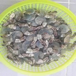 250g {khoảng 45 con} tôm lụi sú Cà Mau bao ăn-loại lớn 30 con 1kg sú tươi, hàng vip chất lượng khỏi chê