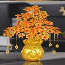Cây kim tiền cầu tài lộc và may mắn - Cây cành vàng lá ngọc gốc hũ vàng loại 7 cành