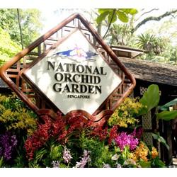VÉ ĐIỆN TỬ - National Orchid Garden - Vườn lan quốc gia Singapore dành cho người12-60 tuổi