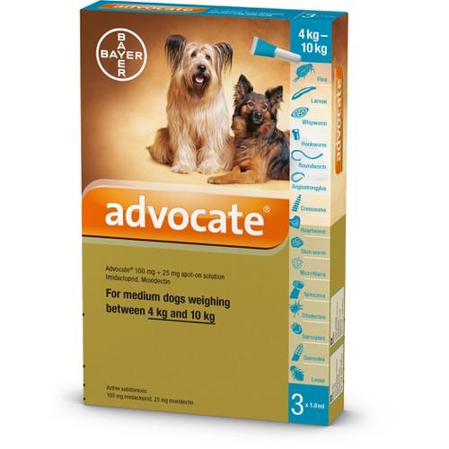 Trị ký sinh trùng Advocate 10 đến 25kg