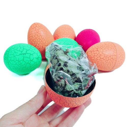 Hộp 12Pcs Trứng Rồng Dinosaur Egg - 7336166 , 13994128 , 15_13994128 , 349000 , Hop-12Pcs-Trung-Rong-Dinosaur-Egg-15_13994128 , sendo.vn , Hộp 12Pcs Trứng Rồng Dinosaur Egg