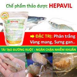 Chế phẩm sinh học thảo dược HEPAVIL - Đặc trị bệnh đường ruột, phân trắng trên Tôm, Cá
