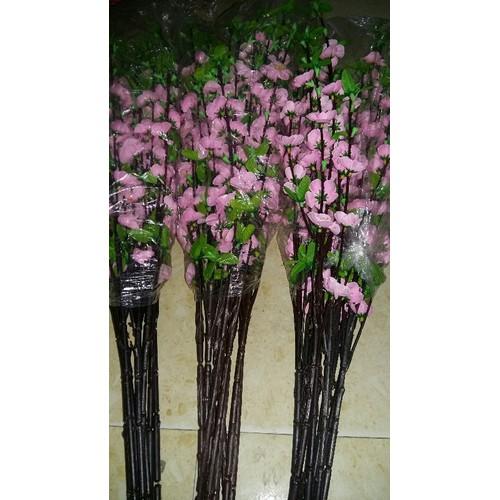 20 canh hoa đào  màu  hồng phai