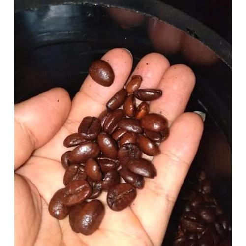 cà hạt cà phê bột daklak 1kg