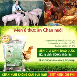 Men ủ vi sinh thảo dược - Ủ chín Thức ăn chăn nuôi. Không cần đun nấu
