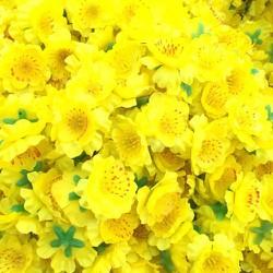 1.5 kg hoa mai, hoa đào giả trang trí nhà dịp tết -019