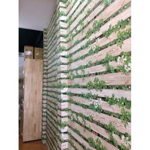 giấy dán tường khổ 10m