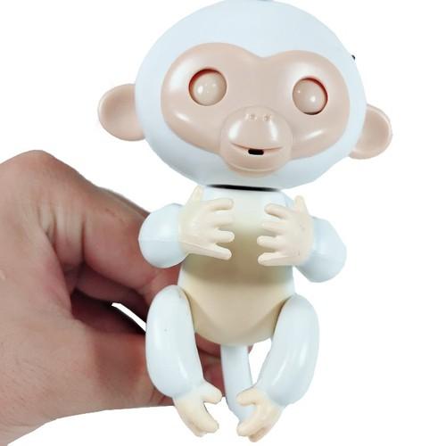 Khỉ Tương Tác Đu Ngón Tay Babymonkay