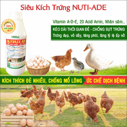 Chế phẩm NUTI-ADE siêu kích trứng cho gà đẻ, vịt đẻ, cút đẻ