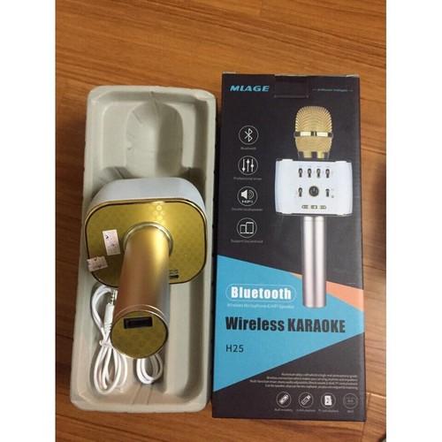micro Hat Karaoke H25 Bluetooth 3 In 1