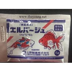 Thuốc Tetra Nhật Dành Cho Cá Cảnh