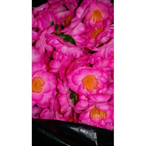 300g hoa đào hoa mai rời