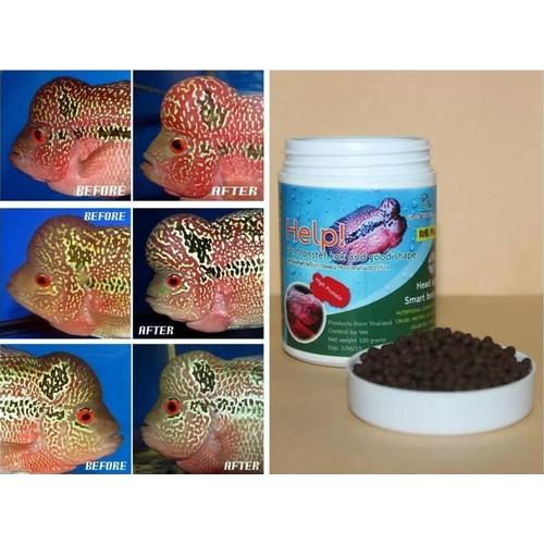 Thức ăn lên đầu cho cá la hán - Cz1 Help Kok