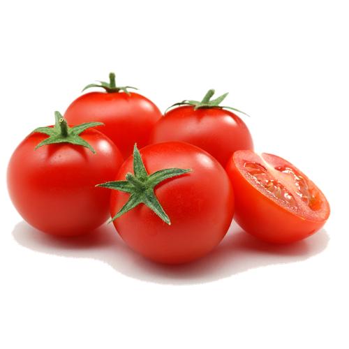 COMBO 5 gói hạt giống cà chua quả to 9 Tốt TẶNG 1 phân bón