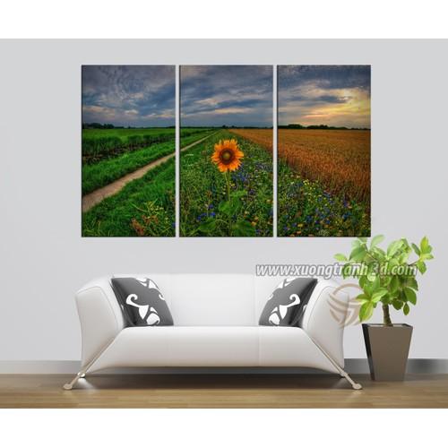 Tranh bộ 3 bức trang trí hoa hướng dương 40x60 - 7162979 , 13876240 , 15_13876240 , 449000 , Tranh-bo-3-buc-trang-tri-hoa-huong-duong-40x60-15_13876240 , sendo.vn , Tranh bộ 3 bức trang trí hoa hướng dương 40x60