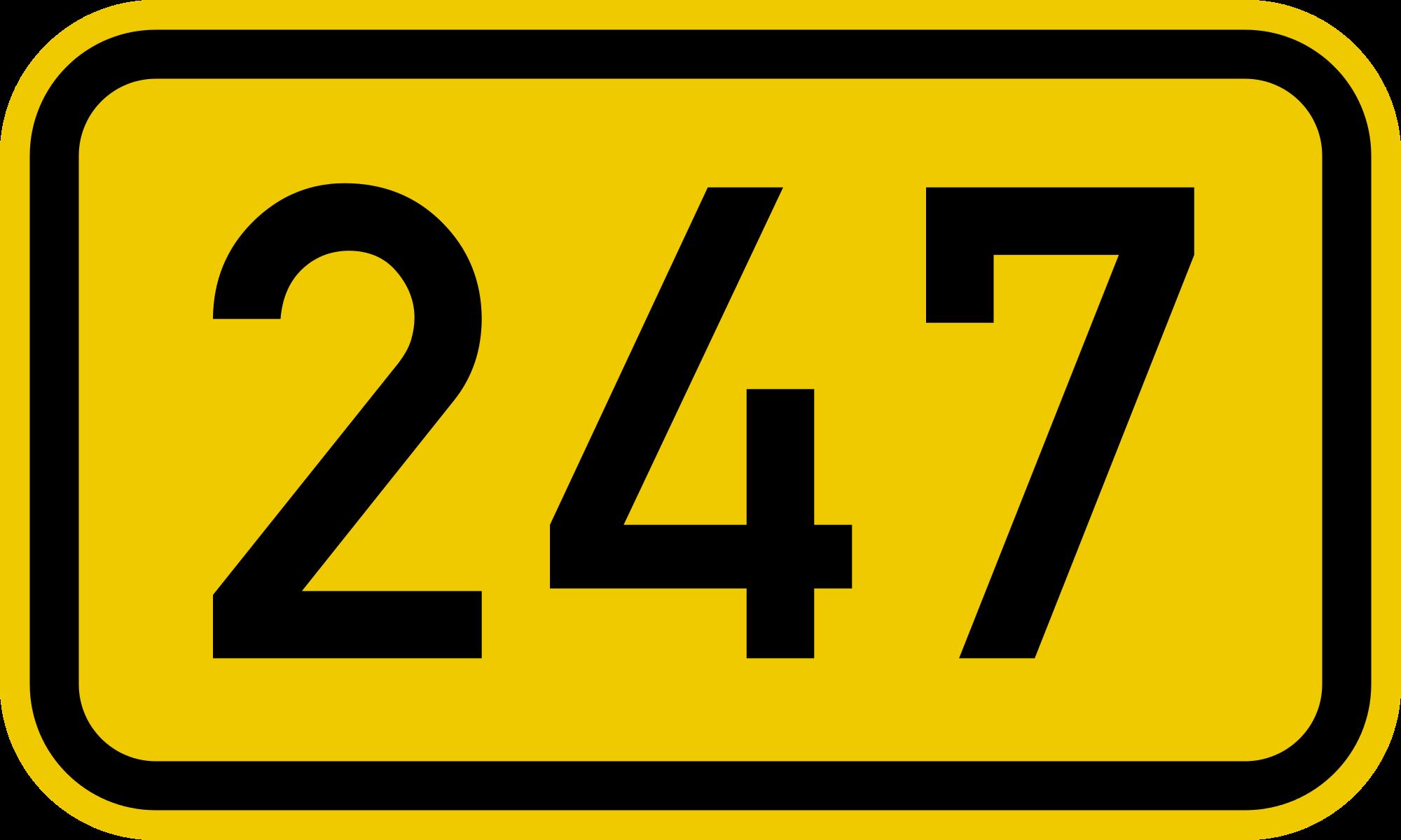 BACH HOA 247
