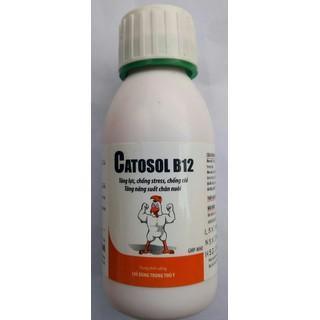 Một Chai Catosol B12 100ml - 0001041 thumbnail
