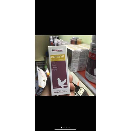 thuốc kích hót canto vit cho chim