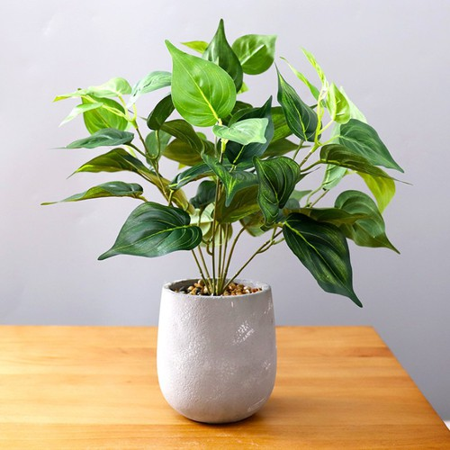 Chậu cây giả-chậu cây cảnh-cây cảnh-cây giả - 7303152 , 13973910 , 15_13973910 , 430000 , Chau-cay-gia-chau-cay-canh-cay-canh-cay-gia-15_13973910 , sendo.vn , Chậu cây giả-chậu cây cảnh-cây cảnh-cây giả