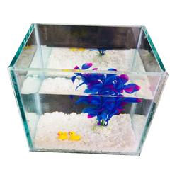 Bể cá mini để bàn 15cm - Tặng kèm tiểu cảnh + Phụ kiện