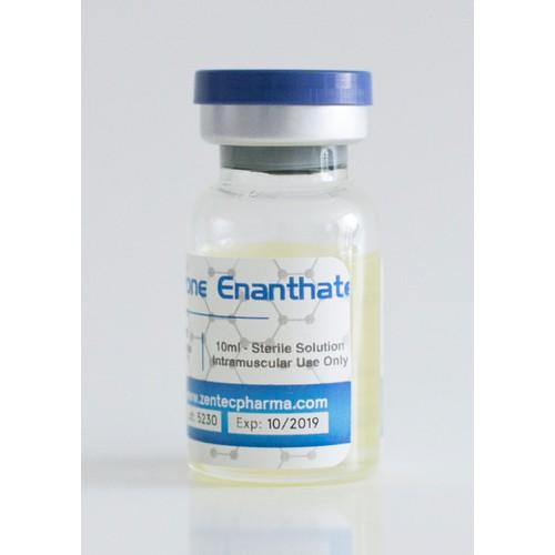 thuốc steroid testoterone enanthate 250mg lọ 15ml
