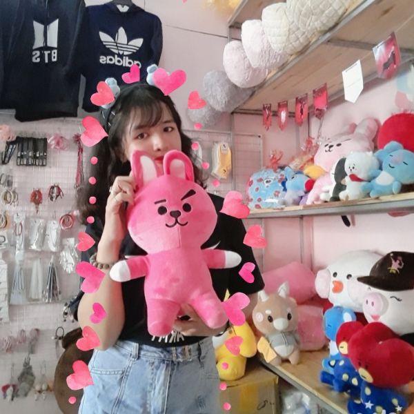 Gấu Bông Bt21- Doll Cookky 35cm 5