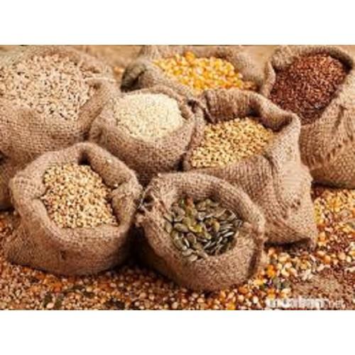 hạt giống 500 gam