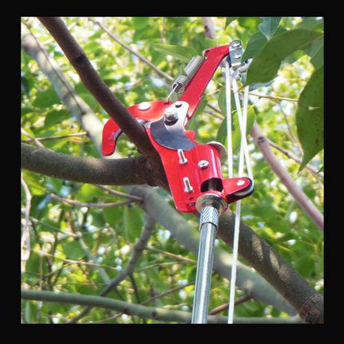 kéo cắt cành cây trên cao LDI2417