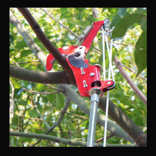 kéo cắt cành cây trên cao BKB4957