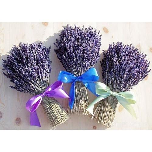 Bó hoa khô Lavender Pháp cột nơ - bó mộc như hình