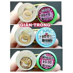 Contact lens Kính áp tròng BROWN