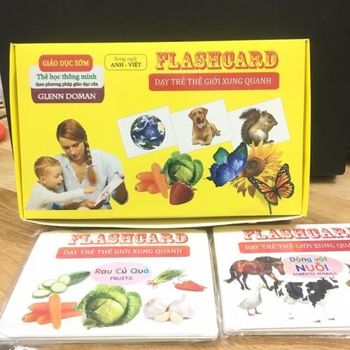 Bộ Flashcard song ngữ dạy bé thế giới xung quanh