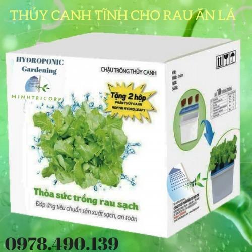 Bộ thùng trồng rau thủy canh tĩnh - 6534221 , 16608081 , 15_16608081 , 1399000 , Bo-thung-trong-rau-thuy-canh-tinh-15_16608081 , sendo.vn , Bộ thùng trồng rau thủy canh tĩnh