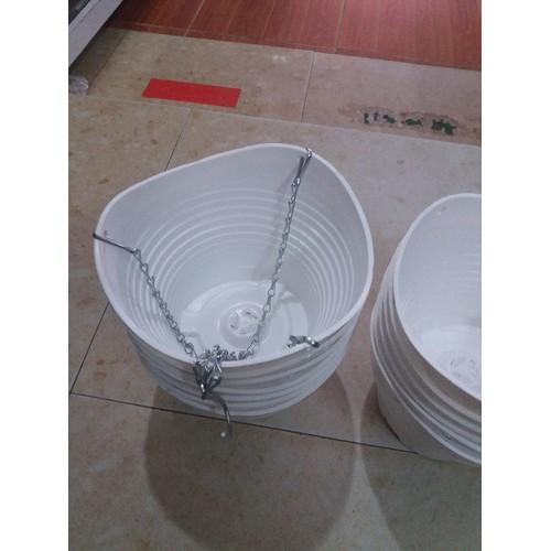 10 chậu trắng quai xích rộng 20cm