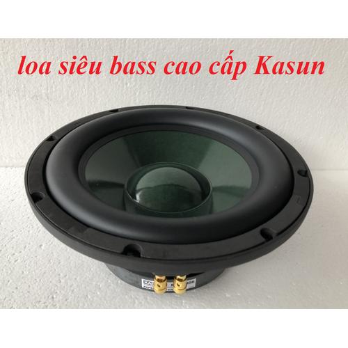 1 Loa bass 25 cao cấp Kasun