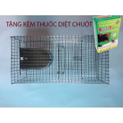 Bẫy chuột thông minh kèm thuốc diệt chuột - 4581182 , 16732427 , 15_16732427 , 179000 , Bay-chuot-thong-minh-kem-thuoc-diet-chuot-15_16732427 , sendo.vn , Bẫy chuột thông minh kèm thuốc diệt chuột