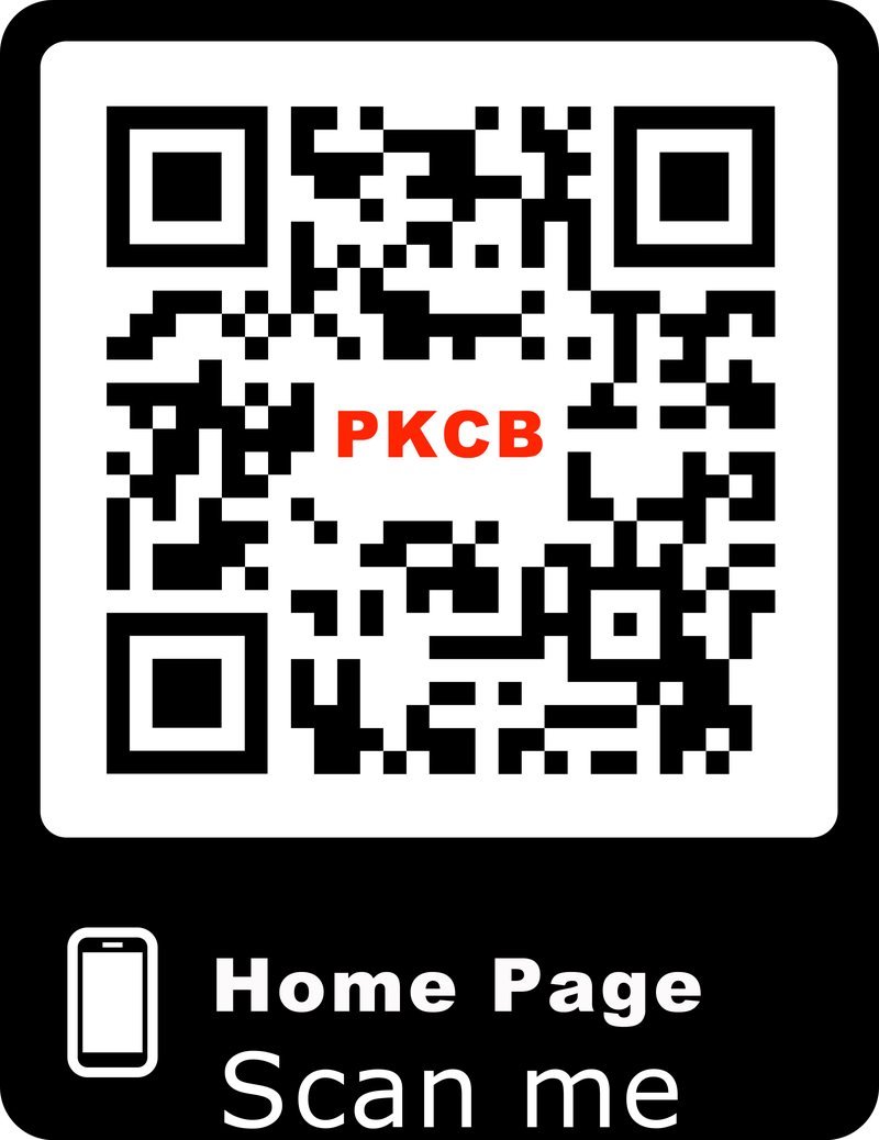 Tai nghe Bluetooth nhét tai chống nước 750A PKCB153 tai nghe thể thao 2