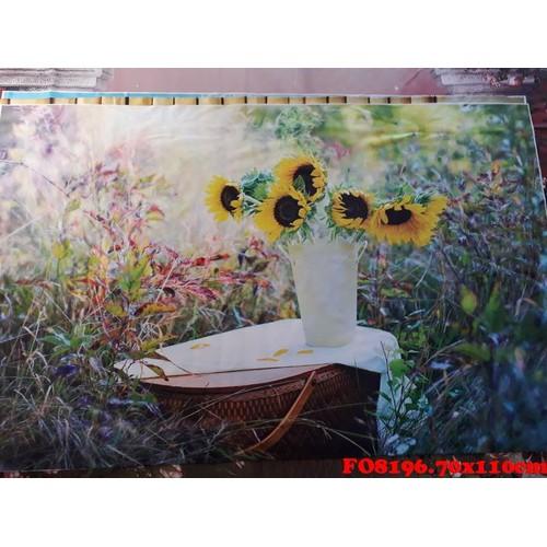 Vải phông nền FO8196 2.70x110cm